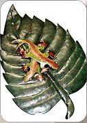 Metal leaf with geckos